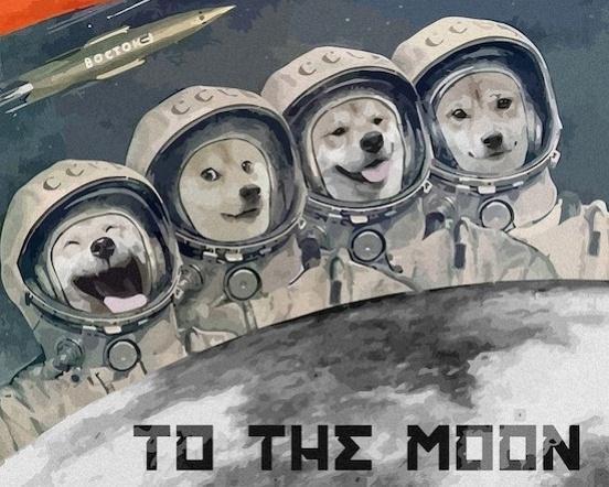 狗币 DogeCoin 相册