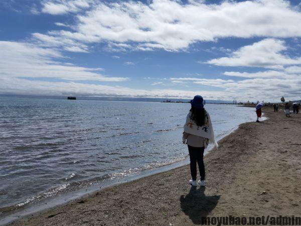 青海湖照片