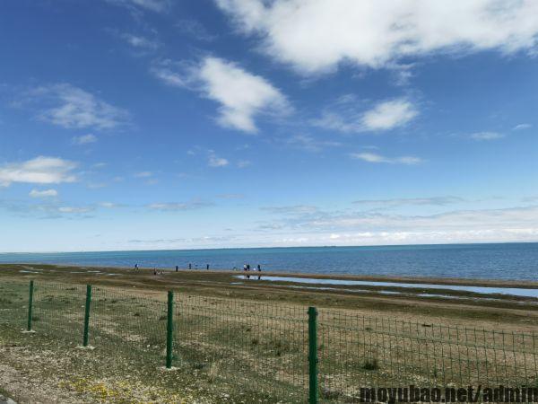 青海湖水颜色分界线